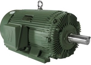 Worldwide Electric Rock Crusher Motor